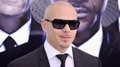 Exiling Pitbull