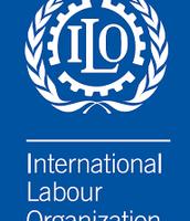 The ILO