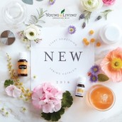 The Spring Catalog has arrived!!