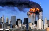 Terrorists: