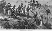 Some slaves traveled all over the place to find their own materials.