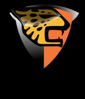 chiapas Jaguares