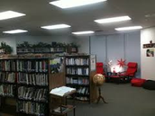 Here is the library.