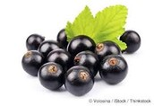 Black current berry