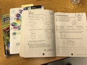 Study / Homework Help
