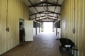 fabulous barn . six foaling stalls . more