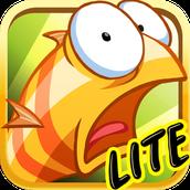 Lite apps