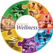 6. PEEHIP Wellness Screening