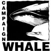 Campaign Whale