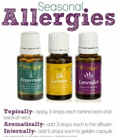 Allergy Time!