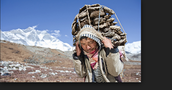 Life as a Zopa Sherpa