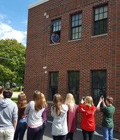 Window egg drop