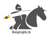 Shining Knights Chess