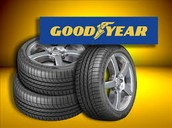 We have the best tires for any necessity.