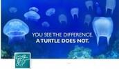 Plastic kills... don't let it