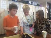 William, Mason, and Tiffany preparing plants for the grow lab!