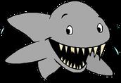 The Field Shark Bite