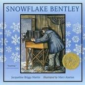Snowflake Bentley 1999
