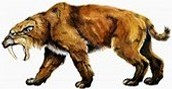 the well known saber-toothed tiger and the wooly mammoth