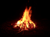Bonfire and Songs