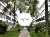 Tiong Bahru Housing Estate