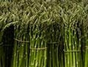 Asparagus (Cooked)