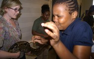 Touching a real snake found in South America! YUK!