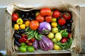 Great Selection of Fruit and Vegetables