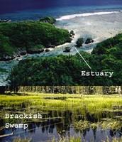 Estuary and Brackish Swamp