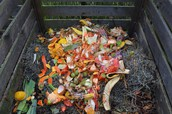 Things that go into a compost bin
