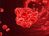 Example Of Blood Clotting
