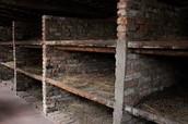 living conditions in Auschwitz 1.