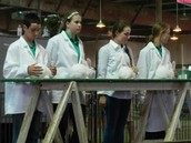 REQUIRED LIVESTOCK QUALITY ASSURANCE