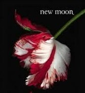 New Moon (Twilight)