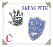 Bully Shield and Silver Heart Hand Charms