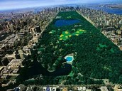 Want a virtual tour of Central Park?  We've got it!