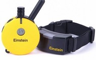 Einstein 500 Training Collar