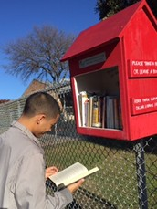 Lanier's Little Free Library