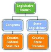 What branch does article 1 deal with?