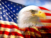 The American Flag/Bald Eagle