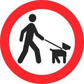 keep dog on lead