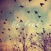 Свободата и любовта са двете крила на една птица. Това, което поддържа и двете, е способността ти да бъдеш сам. Медитацията.