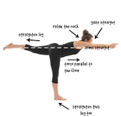 Warrior 3 Pose (Virabhdrasana III)