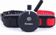 Einstein 2-Dog 802