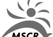 MSCR Fitness