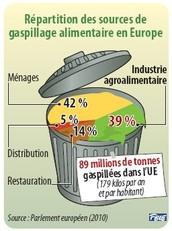 Les Faits du Gaspillage Alimentaire