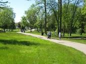 Go To The Park