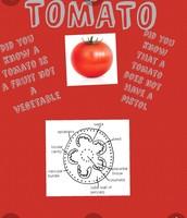 Tomato diagram