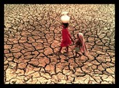 Famine and Droughts