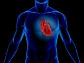 Heart in a Male
